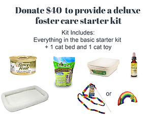 BCHR Deluxe Foster Care Starter Kit.png