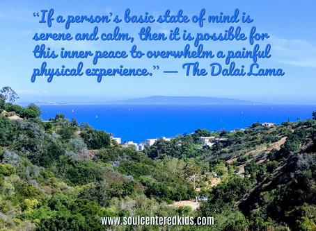 Meditation as a Survival Tool
