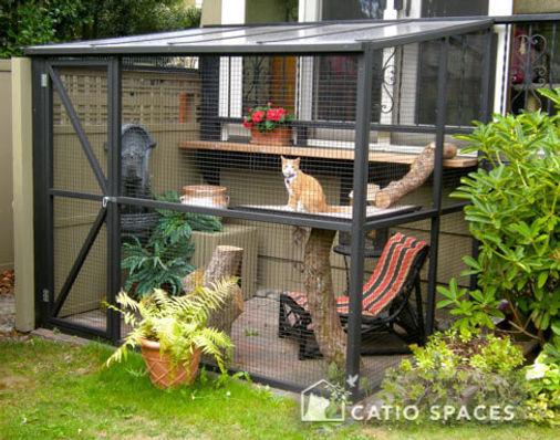 catio-cat-enclosures-sanctuary-ext-catio