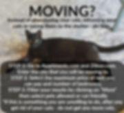 BCHR moving_.jpg