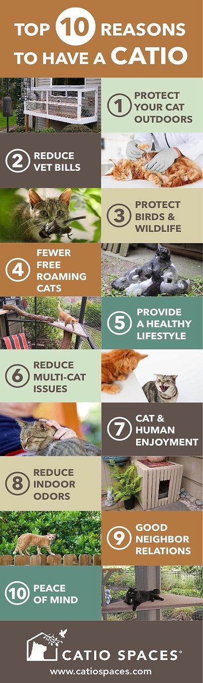 catio-benefits-cat-enclosure-catiospaces