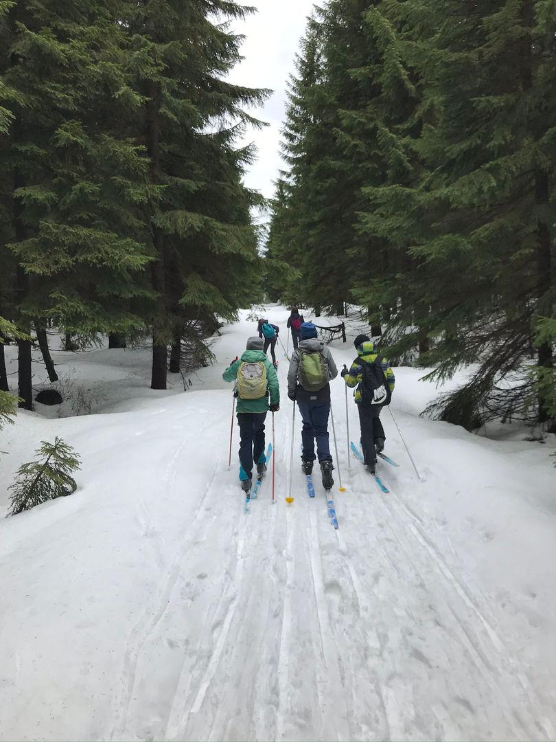 Na běžkařském výletě, Foxík