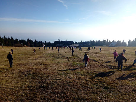škola v přírodě Foxík