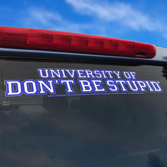 University of DBS Vehicle Window Decal - OUTSIDE Glass