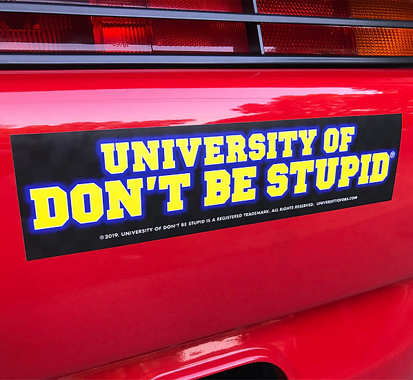 University of Don't Be Stupid Bumper Sticker
