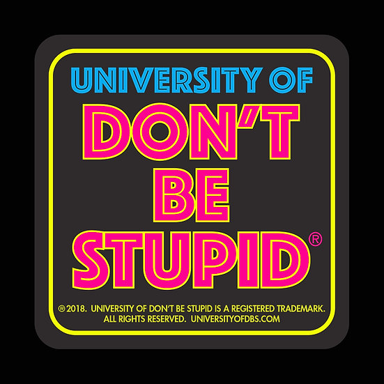"University of Don't Be Stupid - 3"" Square 1980s Style Decal"