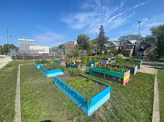 composting site.JPG