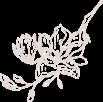 Magnolia-beige2_edited.png