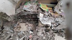 termite control/ MCW