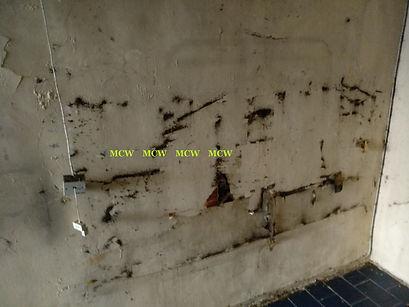 pest control/ MCW