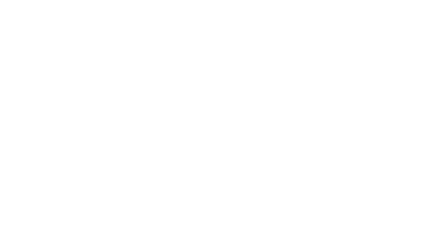 AVIATION.png