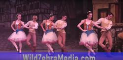 Wild Zebra Media for MDSB