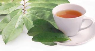 5 Manfaat daun sirsak yang luar biasa
