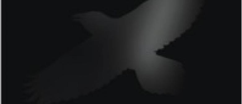 Sigur Ros – Odin's Raven magic