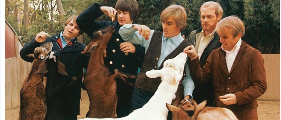 The Beach Boys - Pet Sounds (BSM)