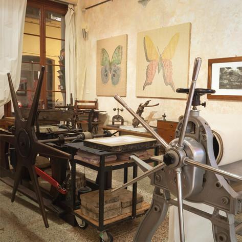 Area stampa ed esposizione