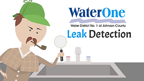 leakdetection.png