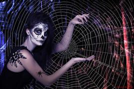 Mistress of the Web