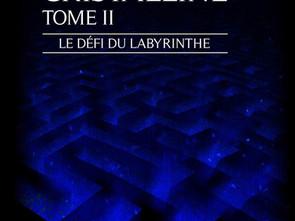 La Caverne Cristalline: Le défi du labyrinthe par Nell Colin Chartier
