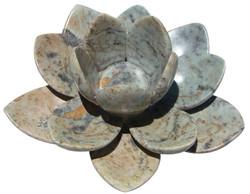 Flor de Lótus 2
