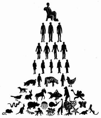 C31 piramidex.jpg