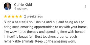 Carrie - Google Review The Mindful Mama.png