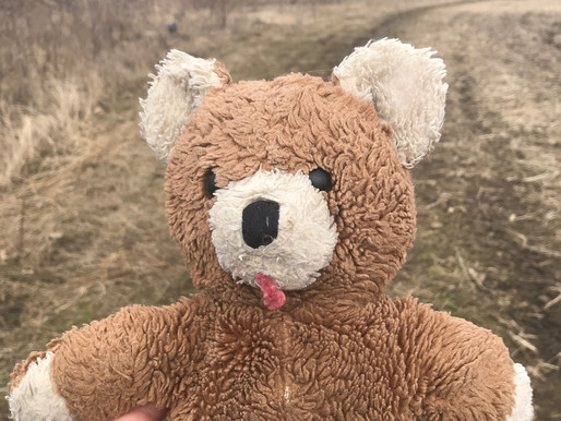 Freddy the Teddy | 7 Best Comforting Tips