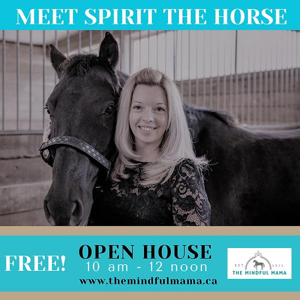 Meet Spirit The Horse Open House .png