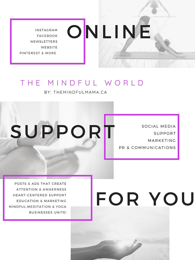 The Mindful World - WEBSITE PAGE SOCIAL