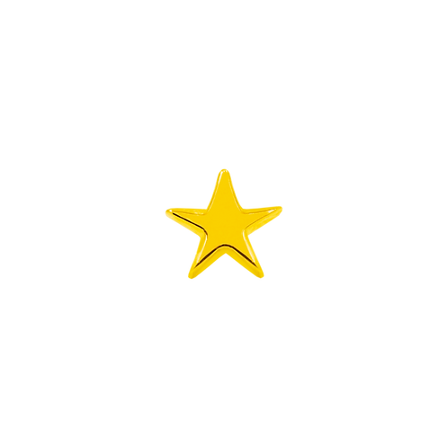 14k Gold Star