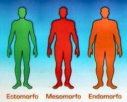 La figura masculina
