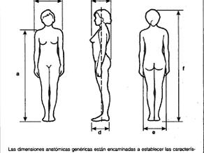Que es la Antropometria