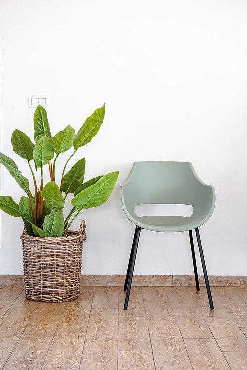 כיסא סהר ירוק