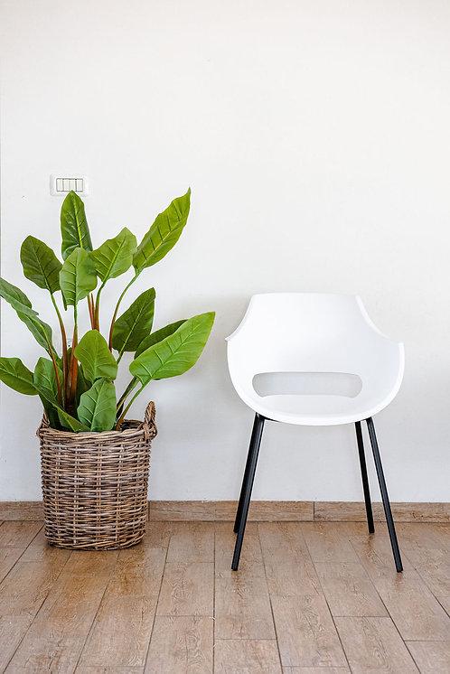כיסא סהר לבן