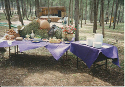 1987 - בת יער