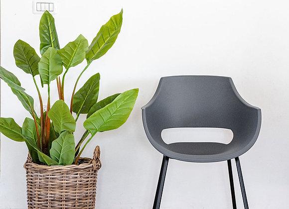כיסא סהר אפור