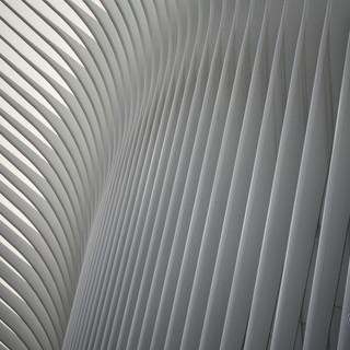 Oculus outside