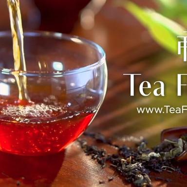 Tea Forté Editors Cut