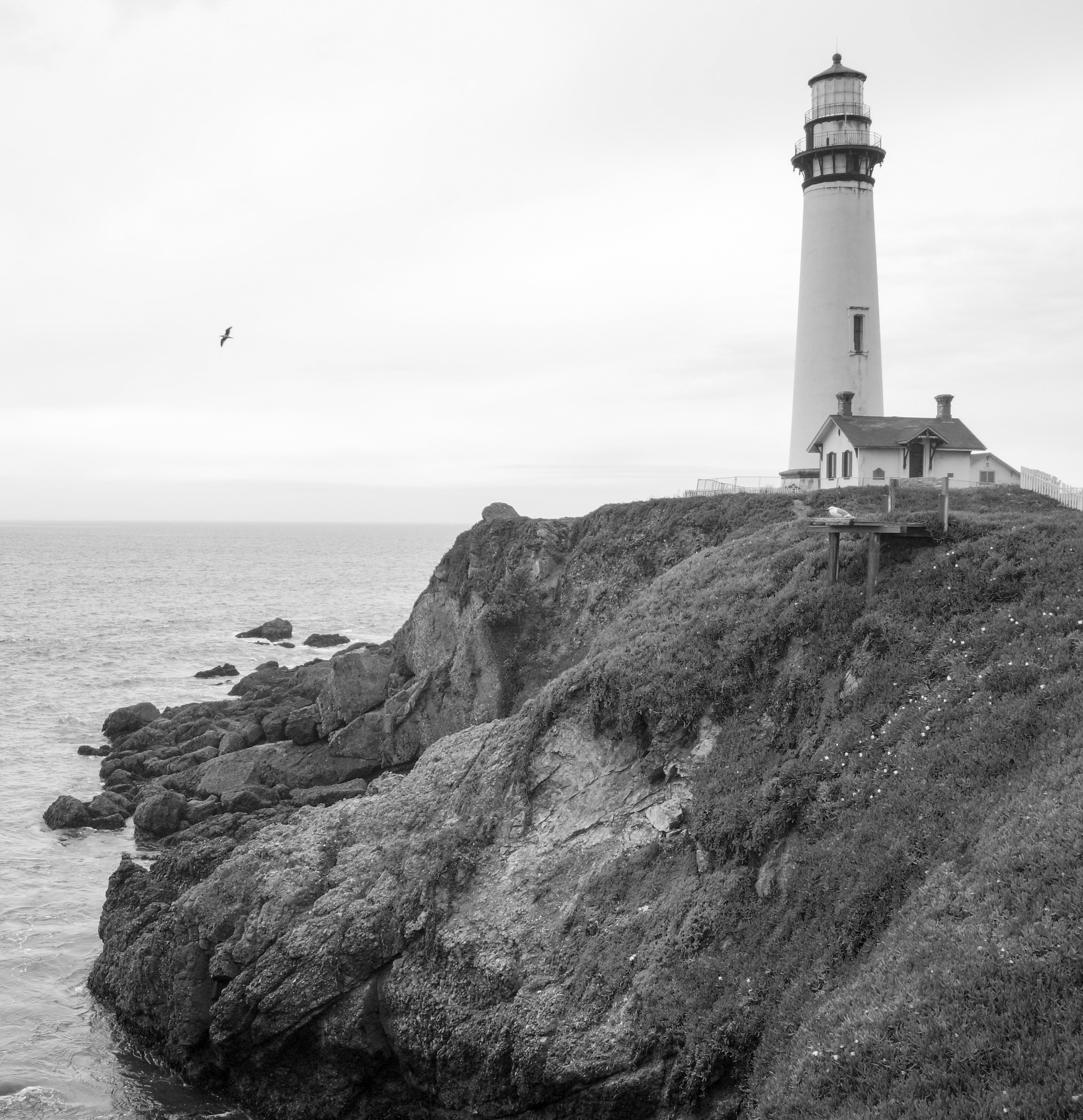 Pigeon Point Lighthouse | California