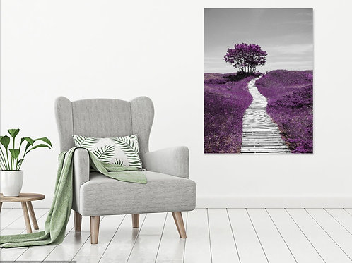 36 x 48 Stretched Canvas Print - Where the Path Leads