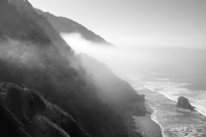 Foggy Coast | California