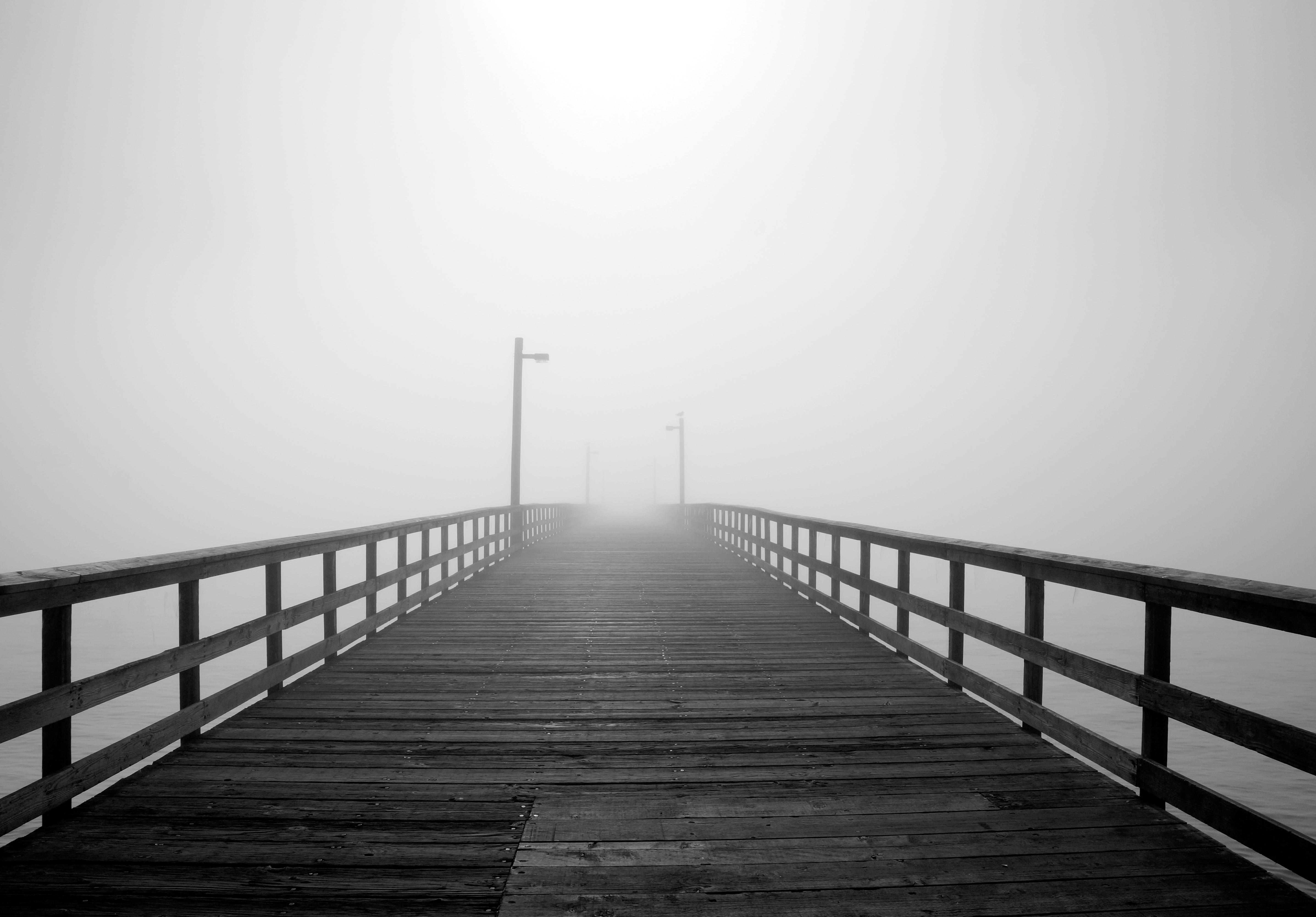 Just a Dream | Crescent City, CA