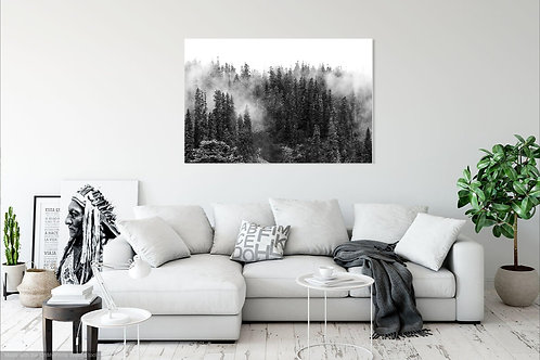 36 x 48 Stretched Canvas Print - Forest Fog