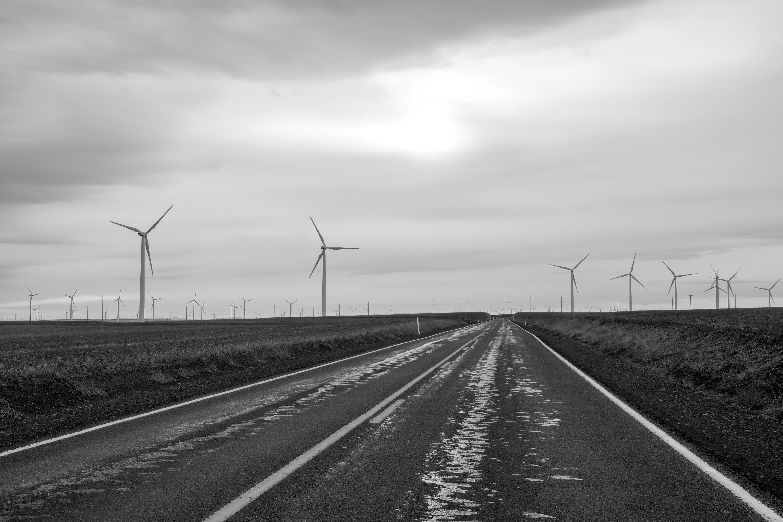 Driving Among Windmills | Oregon