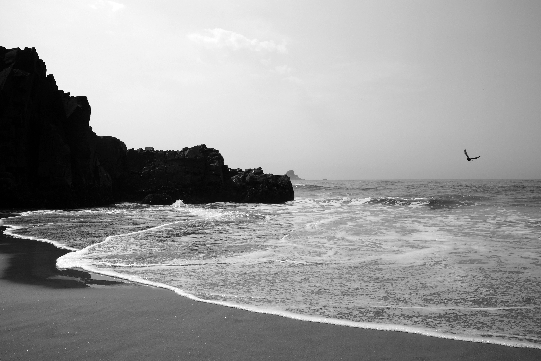 Seascape | Oregon