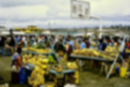 Ecuador 11a, Latacunga market, 5_8_86.jp