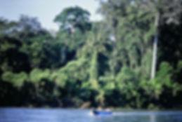 Ecuador 17a, Napo River, 2_8_86.jpg