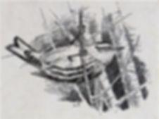 Black-and-white Warbler, LAT.jpg
