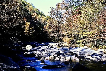 Tennessee 07a, Great Smoky Mts, 10_87.jp