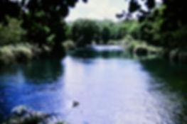 Kenya 02a, Mzima Springs, Tsavo, 12_88.j